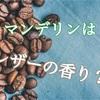 【コーヒー】マンデリンはレザーの香り?
