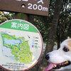 四季を感じられる公園です**山田池公園