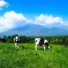 【成長飲料?】牛乳で身長伸びるのはどこまでホント?について調べたメタ分析のお話