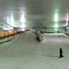 夏でもスノーボード!12年ぶりのスノーヴァ!神奈川県の旅
