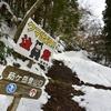 山行記 莇ヶ岳 雪中行 直登→ブナ尾根コース