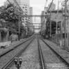 ぶらり独りウォーキング 旧東海道 川崎宿 その5