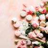 タモキシフェンとリュープリン薬価比較