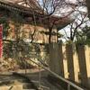 【西国七福神巡り】福寿を司る神様、福禄寿をお祀りする圓満寺へ