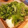 クレソン山菜、花山椒鍋の販売終了。