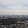 【HYATT】2月に泊まったパークハイアット東京(1)〜パークビュー・キングルーム