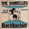 「ウィル・ユー・ラヴ・ミー・トゥモロー(Will You Love Me Tomorrow)」シュレルズ(1960)