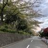 4/10(金)〜4/11(土)