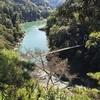 天竜川-竜のいる風景3-