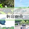 桜から新緑への移り変わりの季節、新宿御苑に行ってきました。