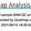 Qualimap2でBAMファイルのカバレッジを見る