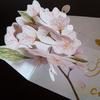 ふんわり桜、季節の便り