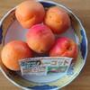 実食「杏」