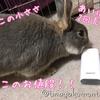 (●゚◇゚●)【軽量】ポケモンGOに最適!モバイルバッテリー「cheero Power Plus 3」で歩きまくり!【5200mAh】