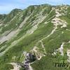 仙丈ヶ岳。8月中旬。