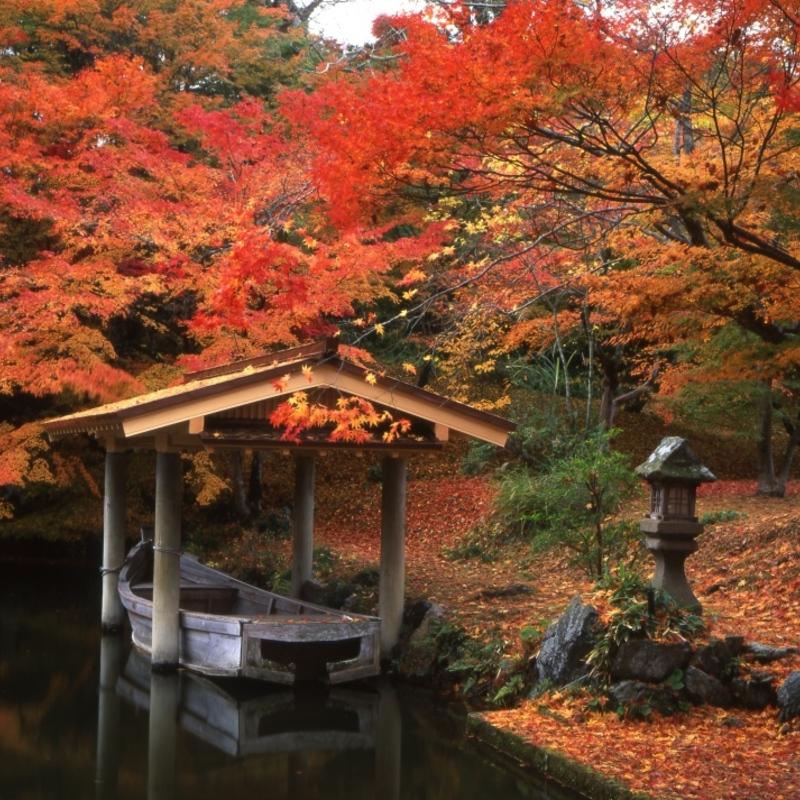 京都で楽しめる温泉&紅葉の日帰り旅〜京都るり渓温泉&あやべ温泉〜