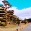 モデルコース【鹿児島主要観光地を巡る2泊3日の旅】モデルプランをご提案!!