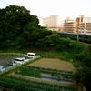 209系(鎌倉道の薬師如来像)