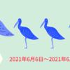 週報 2021/6/7(月)〜2021/6/13(日)