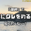 【国見孝則直伝】半誘導釣法が冴えわたる!! 潮岬地区『うりた渡船』【アシカ】