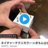 水族館の人気物・チンアナゴ動きがリアル過ぎるガチャガチャが登場!!!