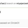 JavaScript in Selenium Test (3): selenium-webdriverをCircleCIで動かす