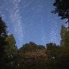 真っ青な空に「ラスベガス」を想う