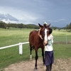 オーストラリア ワーホリ生活 馬のファーム その③(③/③) お別れ