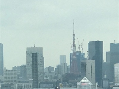 パラリンピック開幕〜あいにくの曇天で、ブルーインパルスはよく見えず〜