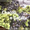ゲタリアでチャコリに酔いしれる午後 ~世界一周の旅~