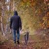 散歩中に思いついた極上メロディは絶対逃してはならない