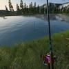 Ultimate Fishing Simulatorについて書いていきます。