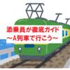 【ツベルクリンWalker】添乗員が徹底ガイド~A列車で行こう(熊本県)~