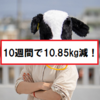 【ダイエット】10週間で体重を10.85kg減らしました!