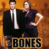 BONES/ボーンズが観れる!動画配信の情報まとめ
