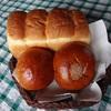 胡月堂のパン