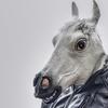 いまさら聞けない馬術用語集65 ~乗馬・競馬など馬業界で使う用語を解説~