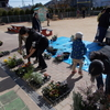 やよいっ子広場「寄せ植え体験」