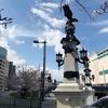 橋の間の枝垂桜