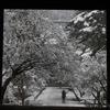 【京都】雪の金閣寺も良いけど、水墨画のような美しさの南禅寺がマジでオススメ