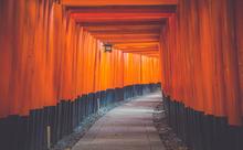 英語の旅行ガイドを読めば、日本文化を説明できるようになる!