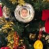 クリスマスツリーを攻撃しませんように - Hope Our Christmas Tree Is Safe