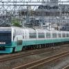 9月15日撮影 東海道線 横須賀線 大船~戸塚間 戸塚大カーブの反対側で色々撮影