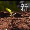 漢字で2017年を振り返る。そして来年の漢字はコレ!
