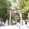 熊野観光(二日目)速玉からの本宮、そして丸山千枚田