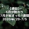 【週記】6月が終わり、7月が始まった1週間 2020/6/29-7/5