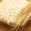 もち麦は食べつわり、吐きづわりにも思わぬ効果が!