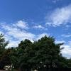 青空 と 曇り空。。