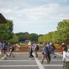 昭和記念公園のコスモス(10月16日)