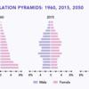 中国の人口問題